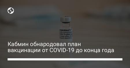 Кабмин обнародовал план вакцинации от COVID-19 до конца года